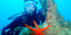 Diving and diving routes with m/y Agramer I